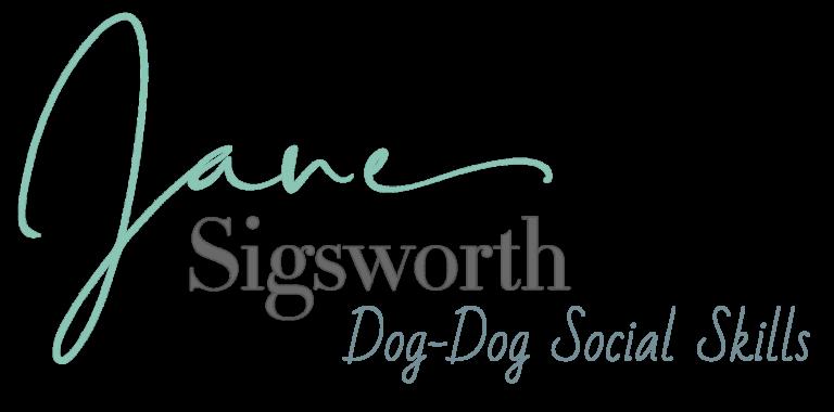 Dog-Dog Social Skills